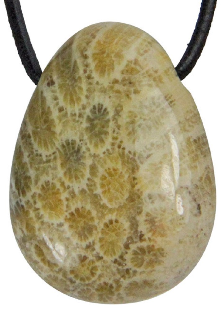 Edelstein versteinerte Koralle Tropfen Anhänger mit Lederband, 3 cm