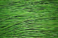 Lederband lindgrün 1 Stück - Stärke 1,5 mm, Länge 1 m